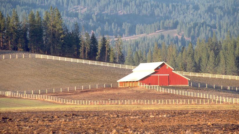 Schüleraustausch: Eine Farm im US-Bundesstaat Washington, 1988