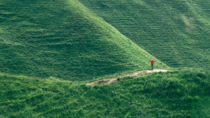 Die Grünen: Das Grün sucht seinen Weg