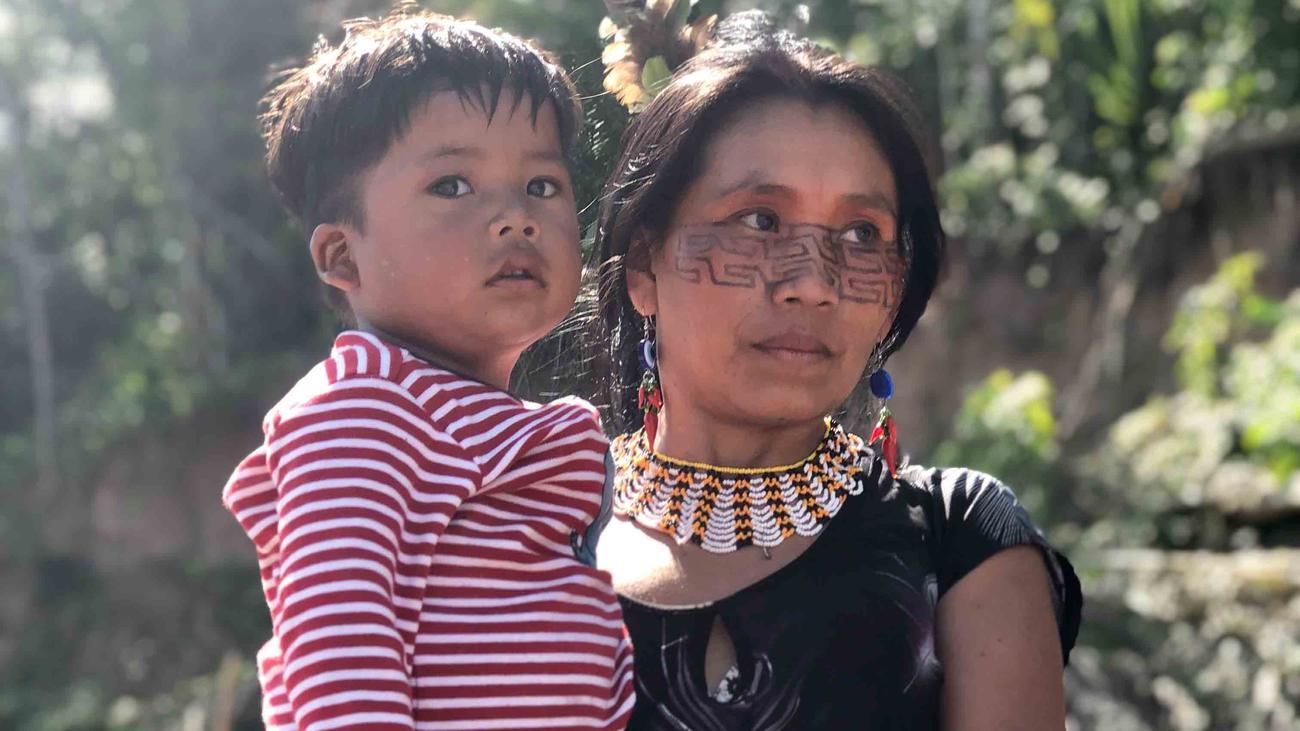 Amazonas: Vom Feuer und vom Fieber