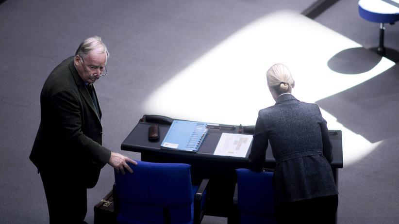 AfD: Auch so ein Kompositum: Die Fraktionsvorsitzenden der AfD im Bundestag Alexander Gauland und Alice Weidel