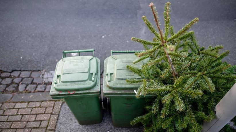 Weihnachten und Corona: Lametto mio