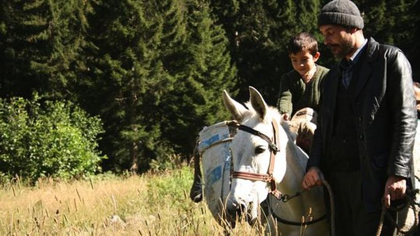 """Film """"Bal – Honig"""": Mit Yusuf und seinem Vater geht es immer tiefer in den Wald"""