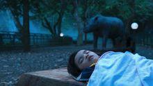 """Szene aus dem indonesischen Beitrag """"Postcards from the Zoo"""""""