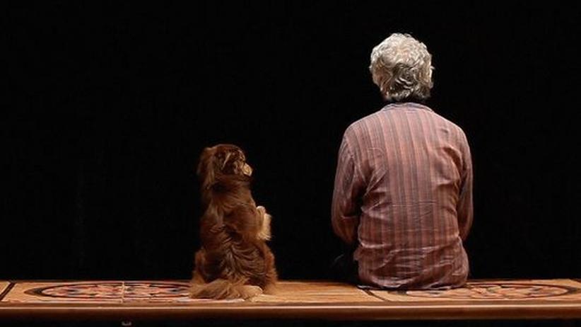 "Iranischer Regisseur Panahi: Kamboziya Partovi in Jafar Panahis ""Closed Curtain"""