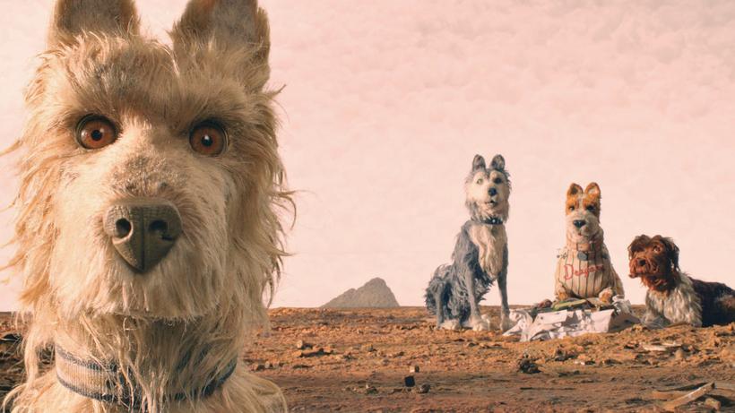Isle Of Dogs Ataris Reise Sieg Der Underdogs Zeit Online