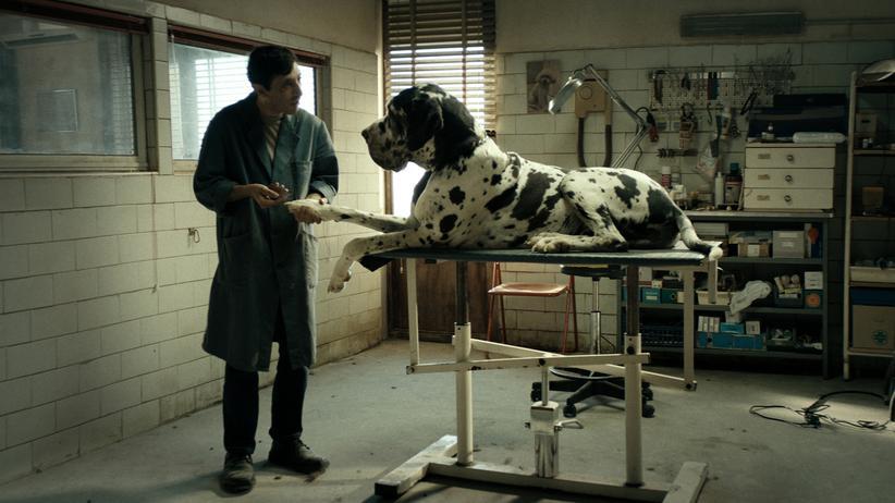 """""""Dogman"""" : Männer sind Hunde"""