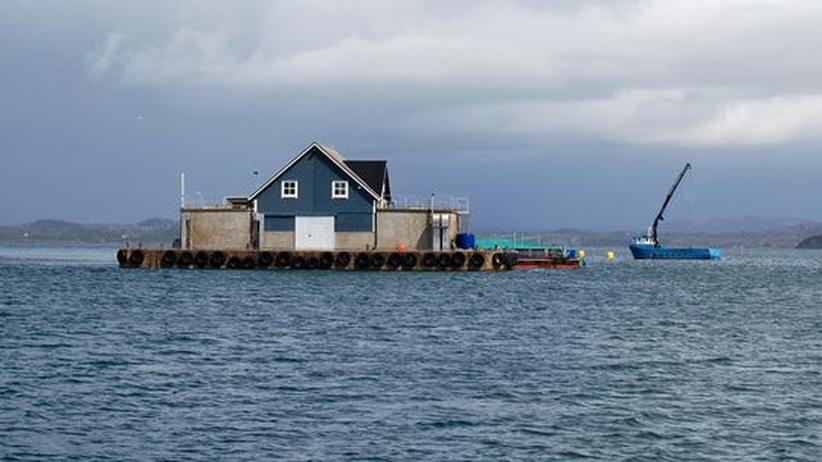 Frode Grytten: Abgelegene Fischfarm in der Nähe von Bergen in Norwegen