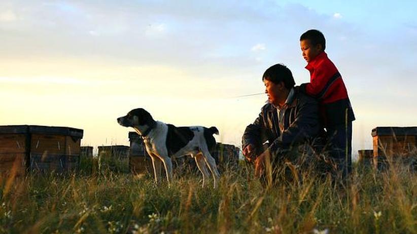 China: Szene aus der chinesischen Provinz Qinghai
