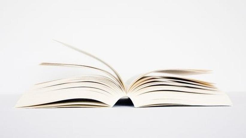 Vereinfachte Literatur: Ein Buch - schlichter geht es kaum. Oder doch? Wir haben für Sie auch das noch vereinfacht
