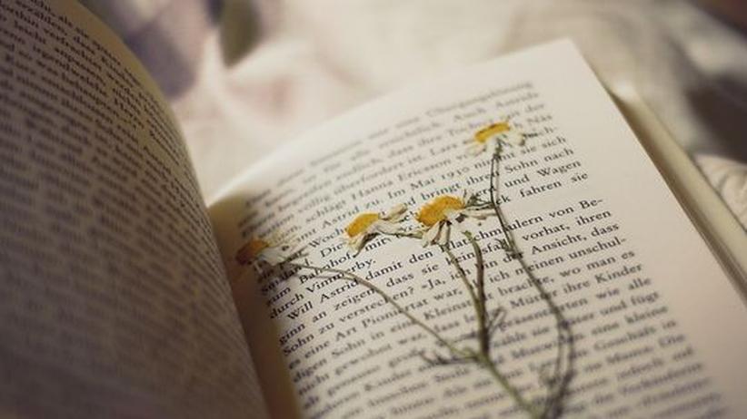 Literaturbetrieb: Ein Roman schluckt einfach alles