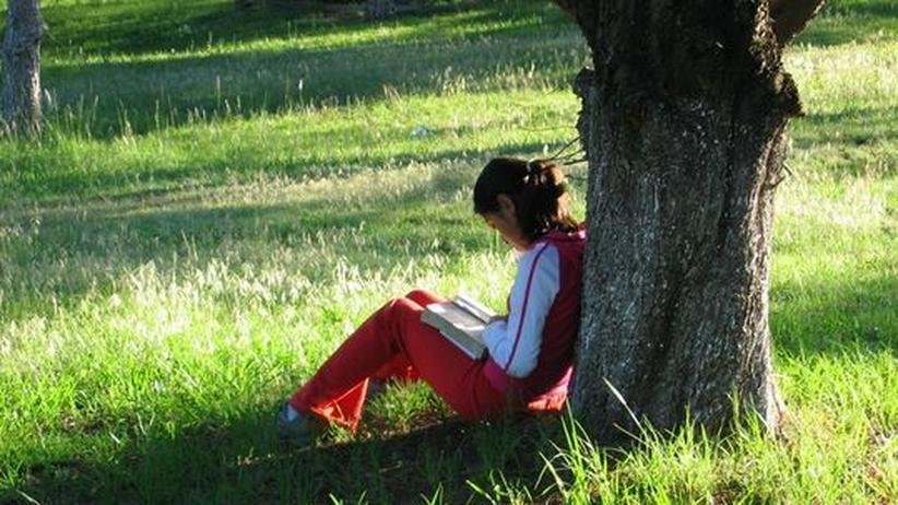 Lesekultur: Auch in Zeiten des Internets werden noch Bücher gelesen