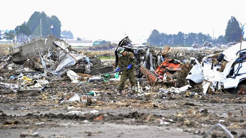 Fukushima: Texte voller Erdstöße