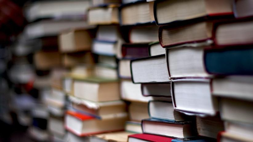 Literaturkritik: James Wood, der beste Leser