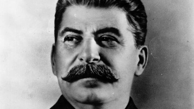 Hitler und Stalin: In verwüstetem Land