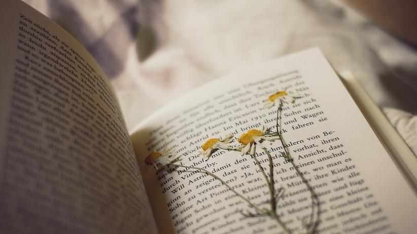 Selfpublishing: Haus bauen, Baum pflanzen, Buch schreiben