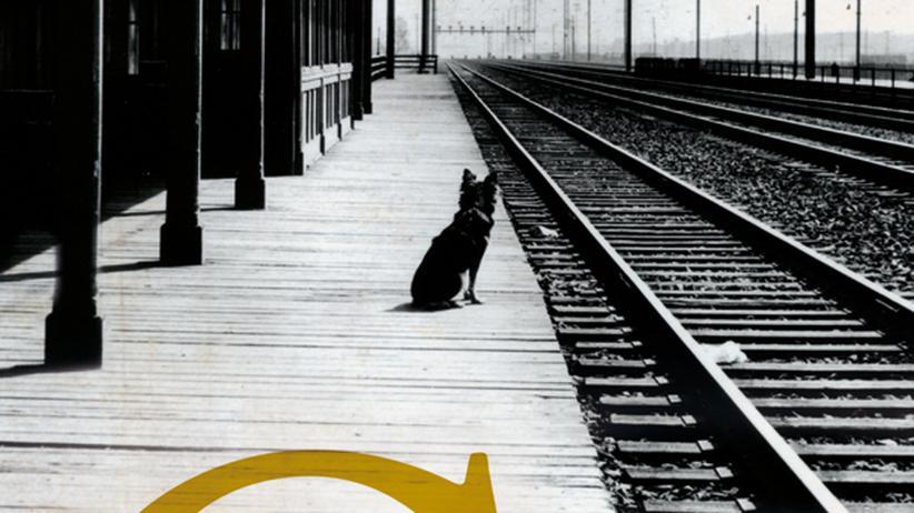 Roman von John Cheever: Der Tschechow von Suburbia