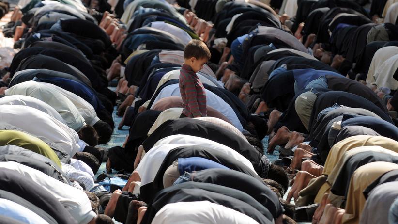 """Religion: """"Es braucht keinen neuen Islam"""""""