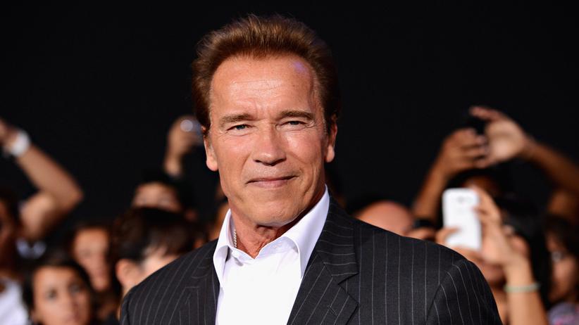 """Arnold Schwarzenegger: """"Alle in Washington wollen nach Hollywood"""""""