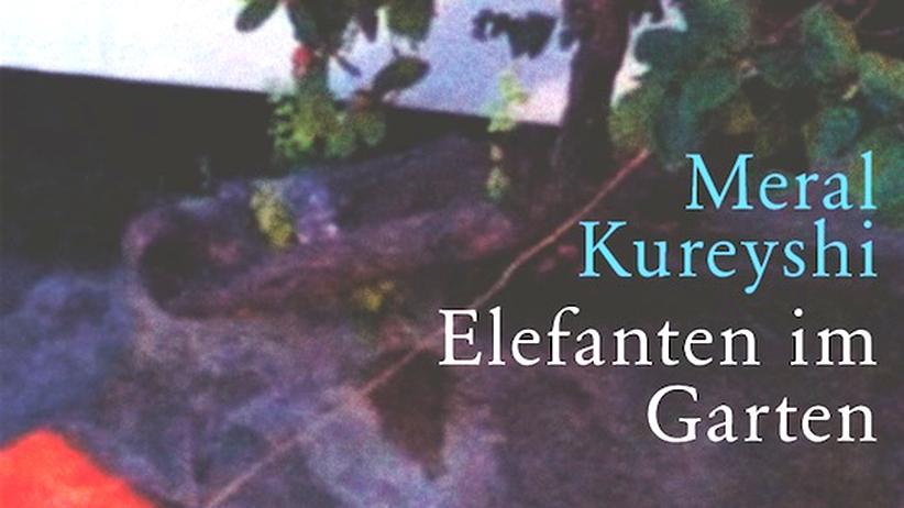 Meral Kureyshi: In den Erfolg getaumelt