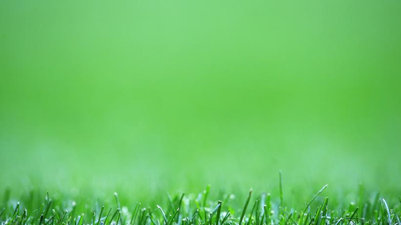 Jean-Philippe Toussaint: Der Rasen, der die Welt bedeutet