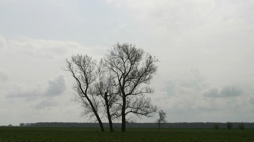 """""""Kurzer Roman über ein Verbrechen"""":  Brandenburgs Havellandschaft"""