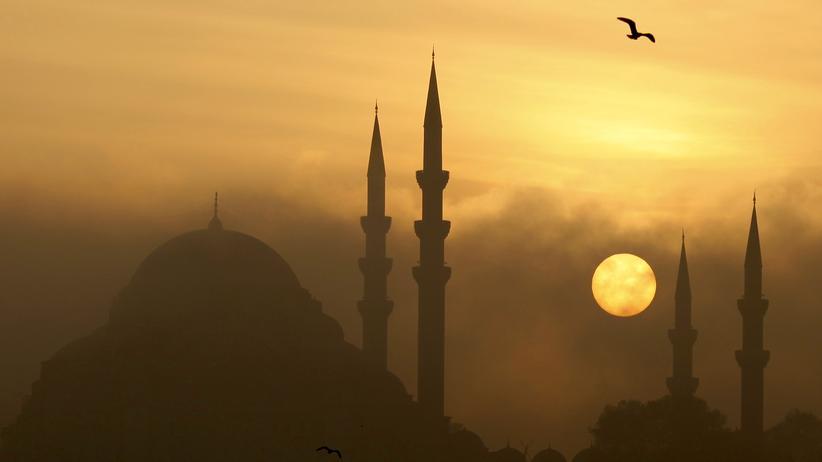 Nedim Gürsel: Skyline von Istanbul