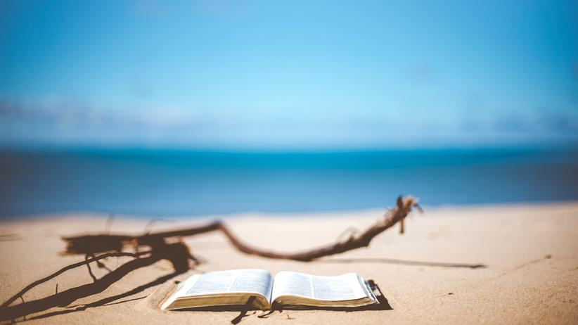 Bücher: Ab in den Lesesommer!