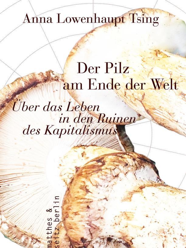 Leseempfehlungen: Anna Lowenhaupt-Tsing: Der Pilz am Ende der Welt