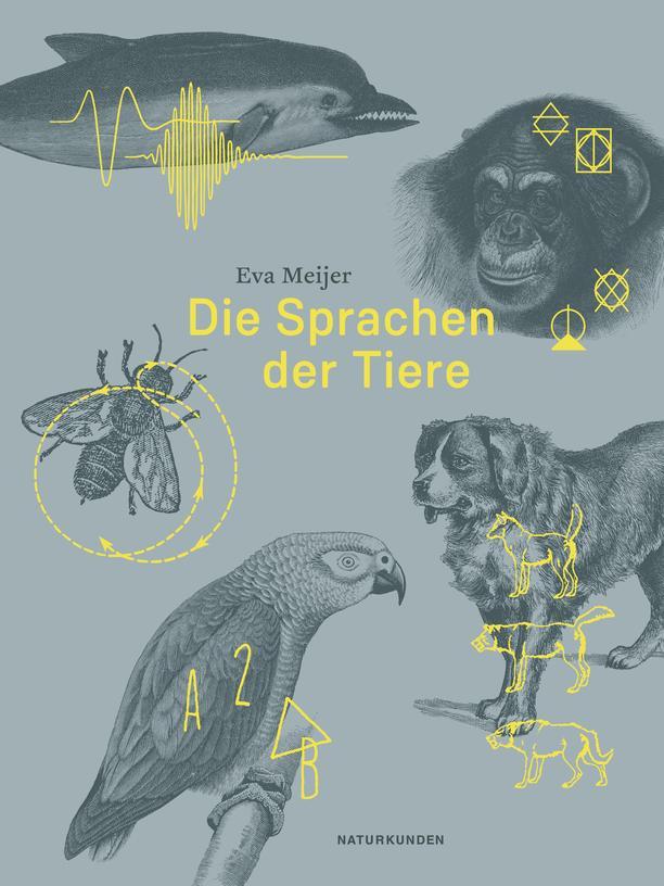 Eva Meijer: Die Sprachen der Tiere