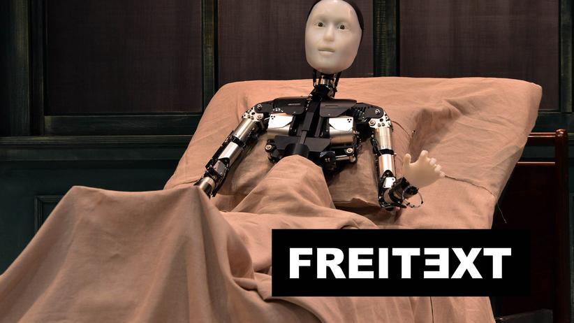Roboter: Der Mensch bastelt weiter