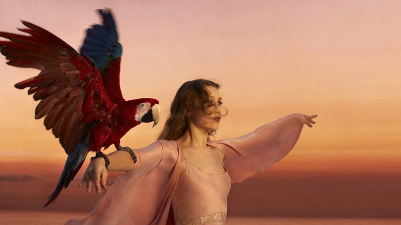 Kultur, Joanna Newsom, Tonträger, Album, Folk, Popmusik