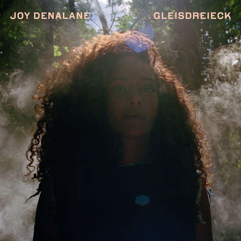 Joy Denalane: Gleisdreieck