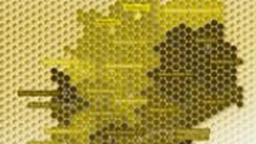 Deutschlandkarte: Bienensterben