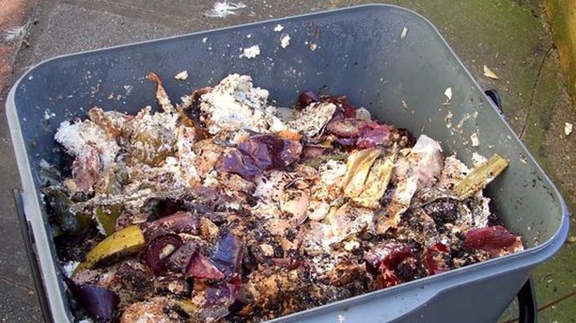 Bokashi Kompost: Eine Armee winziger Weltretter