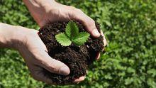 Gardening: Der Gärtner ist der Gute