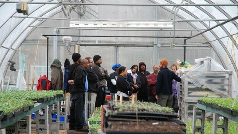Patrick Crouch, der Leiter der Earthworks Farm, erklärt Freiwilligen, was zu tun ist.