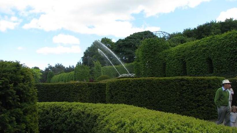 Landschaftsarchitektur: Gutes Gras