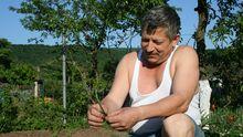 Der kasachische Kleingärtner Walerij