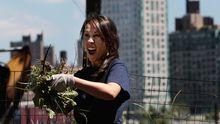 Eine New Yorkerin freut sich über gejätetes Unkraut.