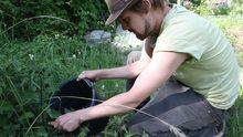 Urban Gardening: Mit Biobrühe gegen Ungeziefer
