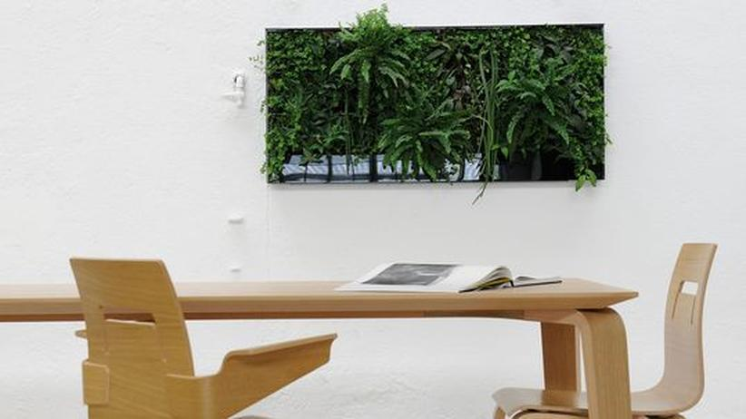 Wohnkultur: Hängende Hausgärten