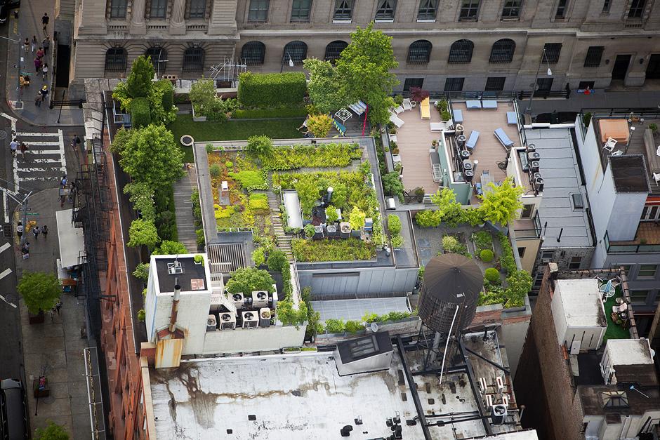 """Quadratischer Blumengarten auf dem Dach eines Penthouses, umgeben von einer Reihe weiterer kunstvoll angelegter Pflanzflächen mit Rasen und Gemüsegarten;  """"176 Grand St, Little Italy, Manhattan"""""""