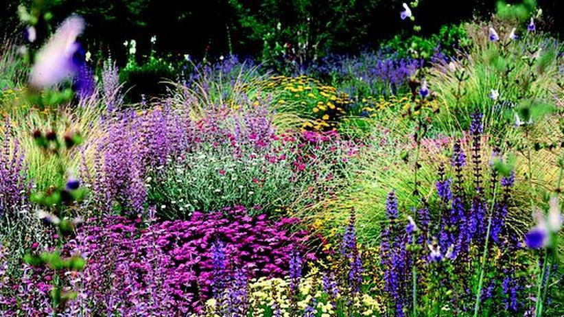 Gartengestaltung: Das Glück ist grün