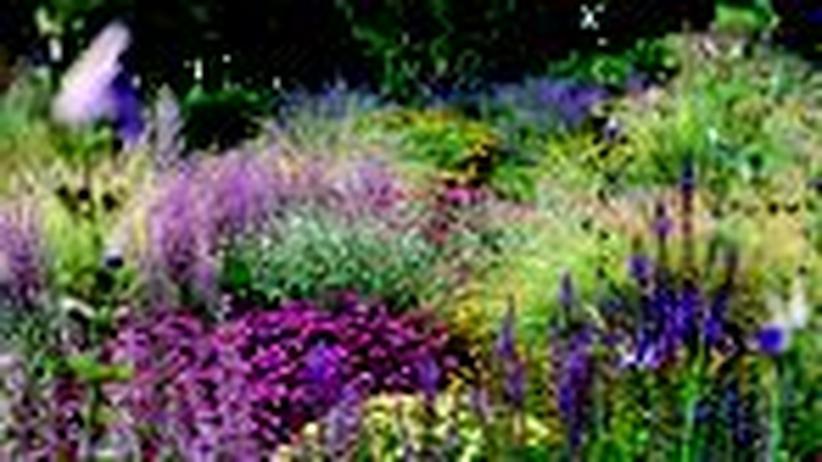 Gartengestaltung: Der neue Geist im Grünen