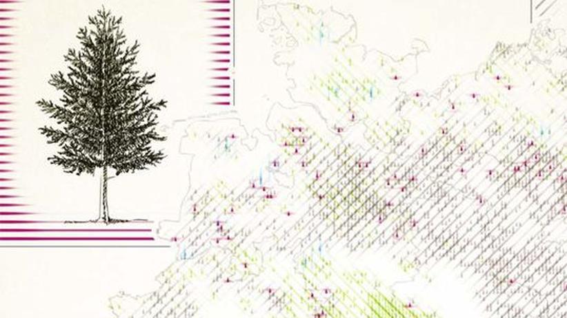 Deutschlandkarte: Nadelbäume