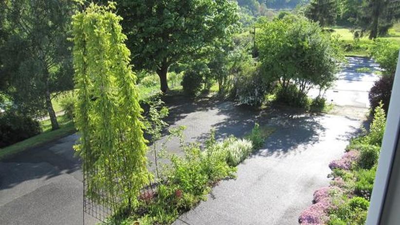 Gartengeschichten: Ein Bolzplatz wird zum Garten