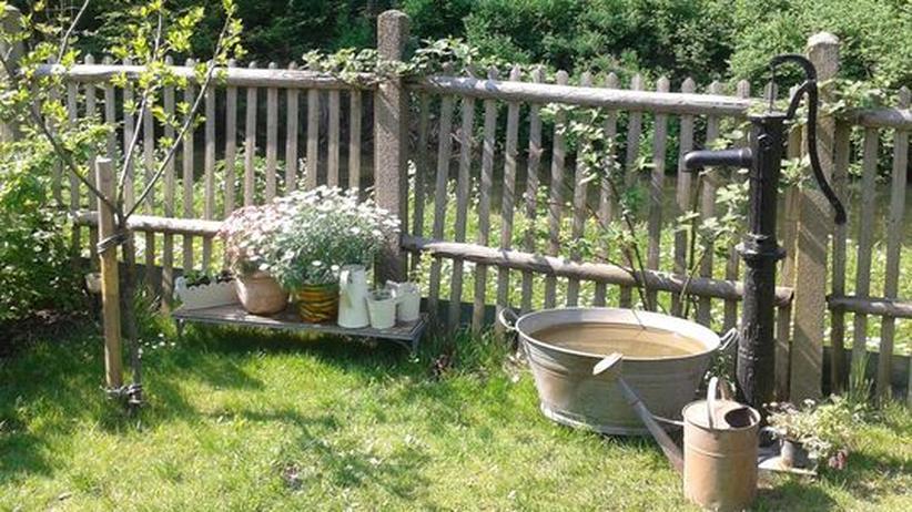 Gartengeschichten: Jede Arbeit bringt sichtbaren Erfolg