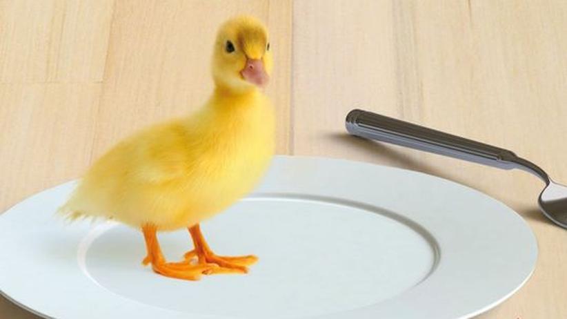 """Buch """"Fleisch essen, Tiere lieben"""": Wir müssen nicht alle Vegetarier werden"""