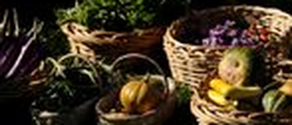 Ein Korb mit Gemüse, angebaut von der amerikanischen First Lady Michelle Obama im Garten des Weißen Hauses.