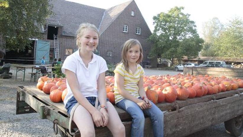 Solidarische Landwirtschaft: Die Teilgeber und deren Familien helfen bei der Bewirtschaftung des Gärtnerhofs.